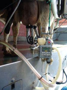 Melktechnikkontrolle ist wichtig für die Sanierung